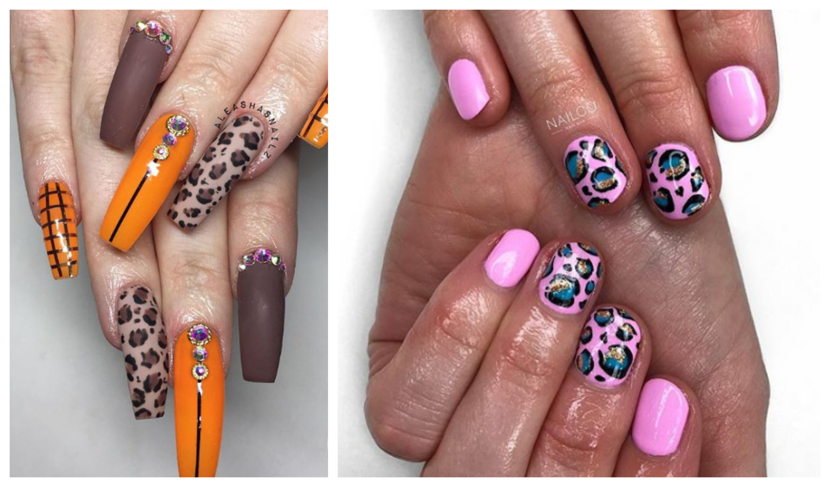 Aberdeen salons create on-trend animal print nails - Society